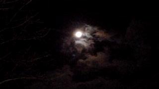 Quiet, ordinary night sky moon