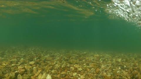 Indian Creek - Anderson, Missouri