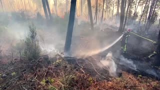 Firefighters battle wildfires in southern France