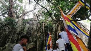 Temple Srilanka