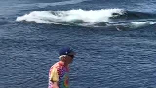 Whale Breach Right by the Beach