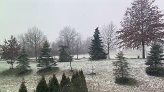 Jan 2021 Winter