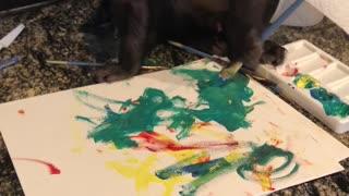 Monkey Paints a Picture