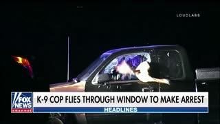 California K-9 jumps through shattered car window to make arrest