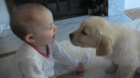 Baby and Puppy meet for the first time