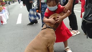 Little Girl Isn't Ready to Leave Dog