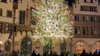 Frankfurt Germany, Christmas Tree lighting 2020