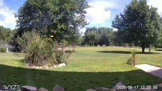 Farm Life Time-lapse