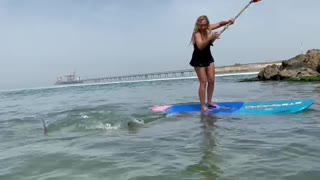 Woman falls into the sea with shark
