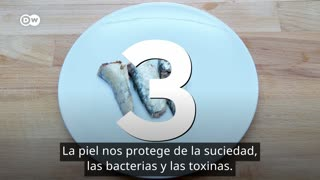 Top 3 de alimentos para tener una piel sana [Video]