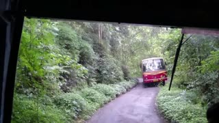 Beautiful forest of Karela in india