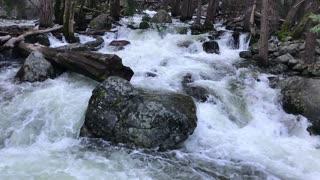 Yosemite, Bridalveil Fall