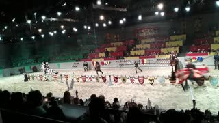 Medieval Times : Jousting Session.
