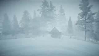 Small cabin in a winter storm
