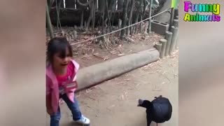 ANIMALS ATTACKING REALLY FUNNY REACTIONS!!!!!