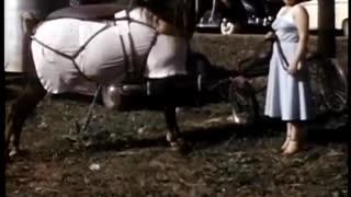 Tennessee Walking Horses 1949