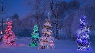 Mystery School Christmas Music 💕