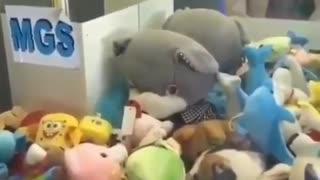 Curious Cat Stuck In Claw Machine 🐈