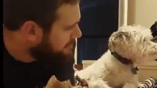 Animal videos 01876