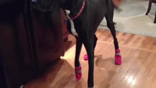 Maggie wears shoes