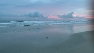 Atlantic Ocean / NewSmyrna Beach