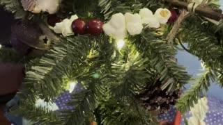 My Christmas trees