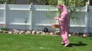 Disgruntled Easter Bunny