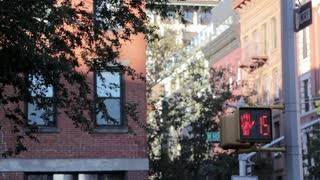 Traffic Light Pedestrian Turns Red Countdown