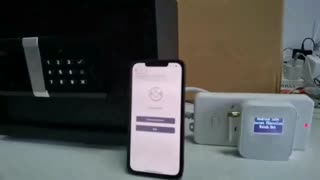 FORFEND Smart IoT Safe with Kidnap Alarm APP Control