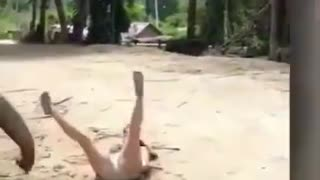 elephant drops a girl with their trunk