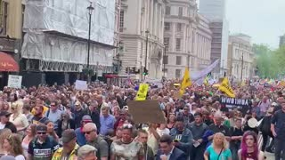 London freedom Protest 29 May 2021