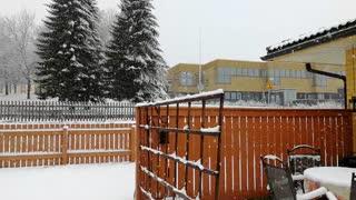 Sudden Snow Blankets Finland After Fine Day
