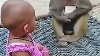 monkey steals baby cell phone - very funny