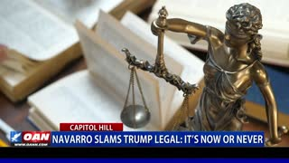 Navarro slams Trump legal team, says 'it's now or never'