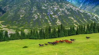 Kyrgyzstans nature