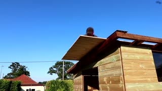 ♀♀Construction A Wooden Shed From Scratch - Complete Project