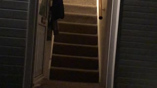 Stair Sledge Stunt Leads to Scrapes