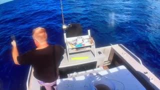 Coral trout fishing Australia
