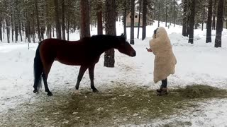 How to Prank a Horse: Parker Pranked by Walking Snowman