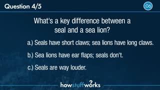 HSW General Knowledge Trivia 2