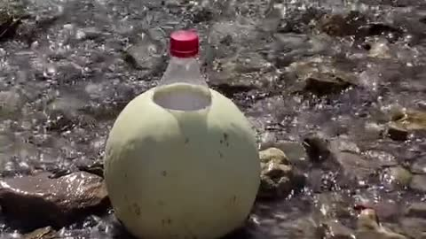 Bottle explosion 💥