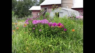 Michigan Countryside