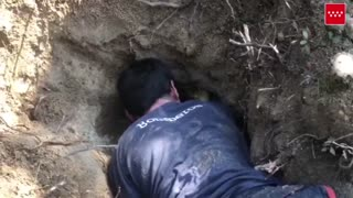 Whimpering Dachshund Rescued From Rabbit Hole
