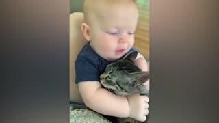 Baby bites cat