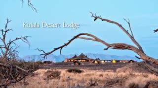 Experience Sossusvlei from Kulala Desert Lodge