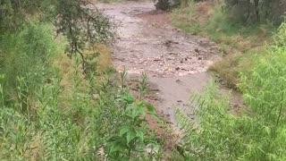 Flash Flood Fills Creek