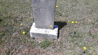 Elmwood Cemetery - Part Two