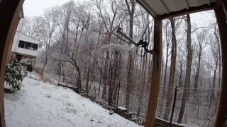 Night snowfall time lapse