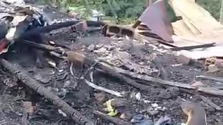 incendio Villas del Girardot