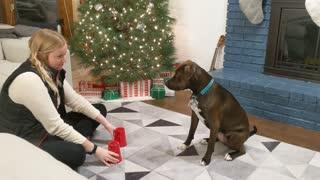 Rescue Doggie Loves Magic Tricks